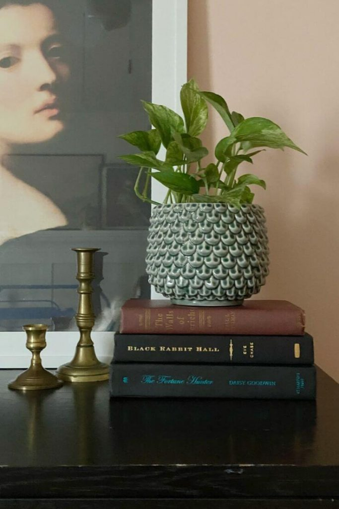 Plant in pot atop a stack of book and candle sticks