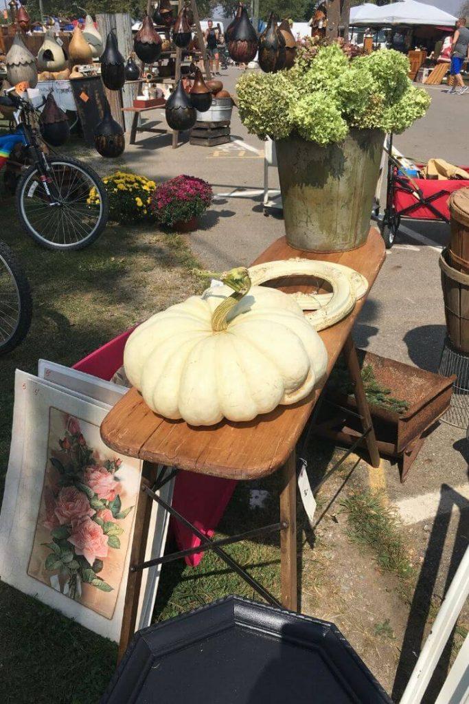 Large cinderella pumpkin amongst other flea market finds.