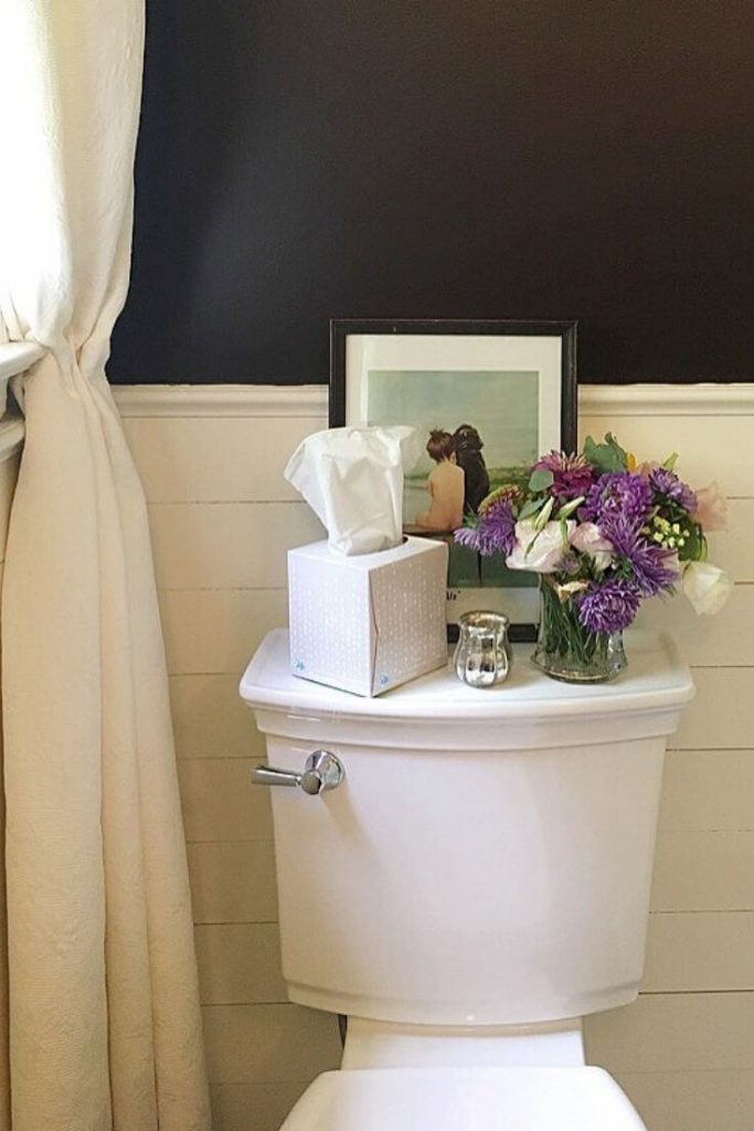 Styled American Standard Toilet  for bathroom remodel
