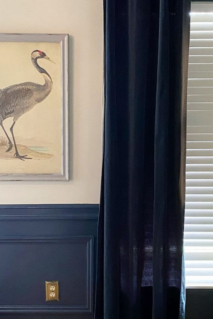 Living room wall showcasing picture moulding in hale navy on bottom half of wall.  Picture of crane hangs above flanked by navy velvet window curtain