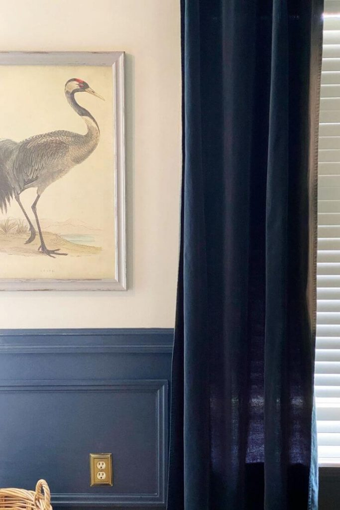 Picture moulding wainscoting painted Hale Navy flanked by a navy velvet window curtain and crane artwork hanging above