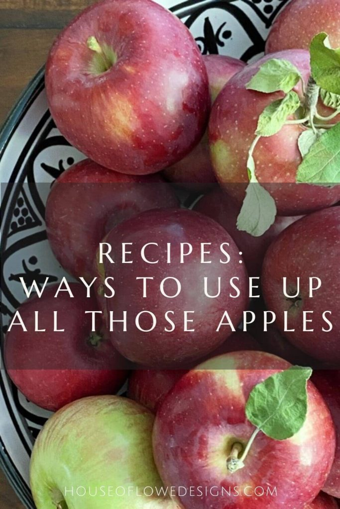 It's fall and that means apple picking season! Looking for ways to use up all those apples? Check out these sweet and savory apple recipes!