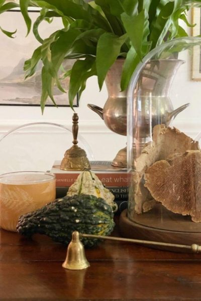 A fall display on top of a dining room table featuring gourds, dried mushrooms under a cloche, and a seasonal candle